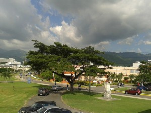 View from Geography and Geology Department at UWI Mona Campus