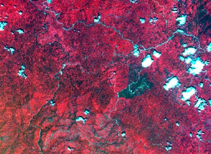 False colour composite SPOT HRV satellite image of the Danum Valley area. Note the dark area towards the left/middle if the image - this is an area of seedlings mortality caused by the last big ENSO event in 1996.