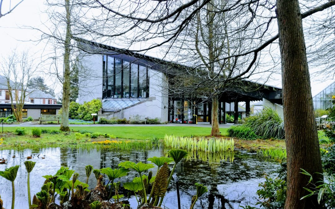 Top 6 reasons why you should visit The University of Dundee Botanic ...