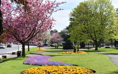 """""""I love it here!"""": Why UoD life is vibrant in Fife"""