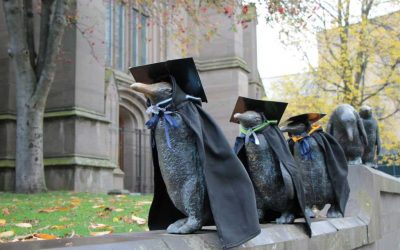Life after graduation – research looks at graduate well-being