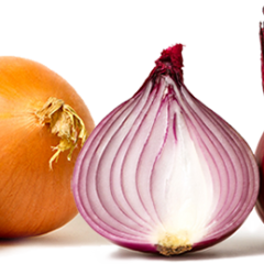 Dundee, You're an Onion.