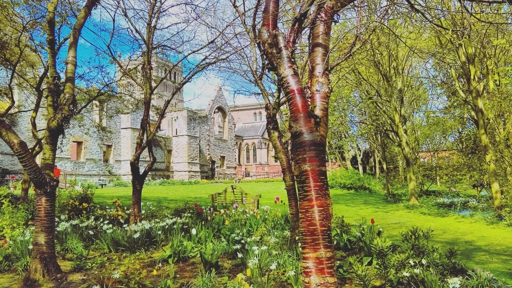 The Archbishop's Palace Garden - Birch Trees and Tulips - Southwell, England