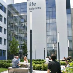 Life Sciences Summer Internship
