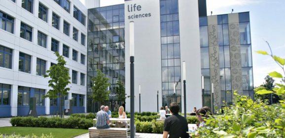 Life Sciences Summer Internship