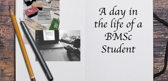 A day in the Life of a BMSc Student